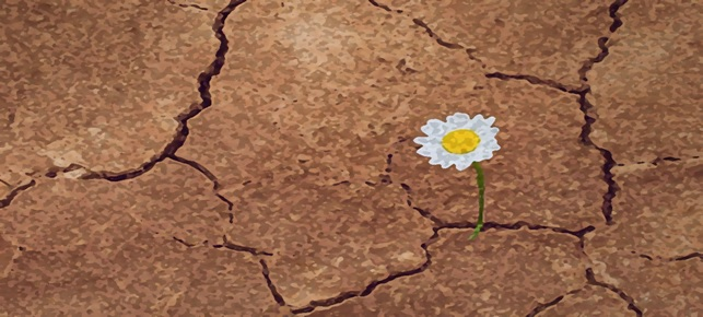 Resilienza: come svilupparla in azienda